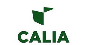 Divani Calia italia - Mobili Incardone